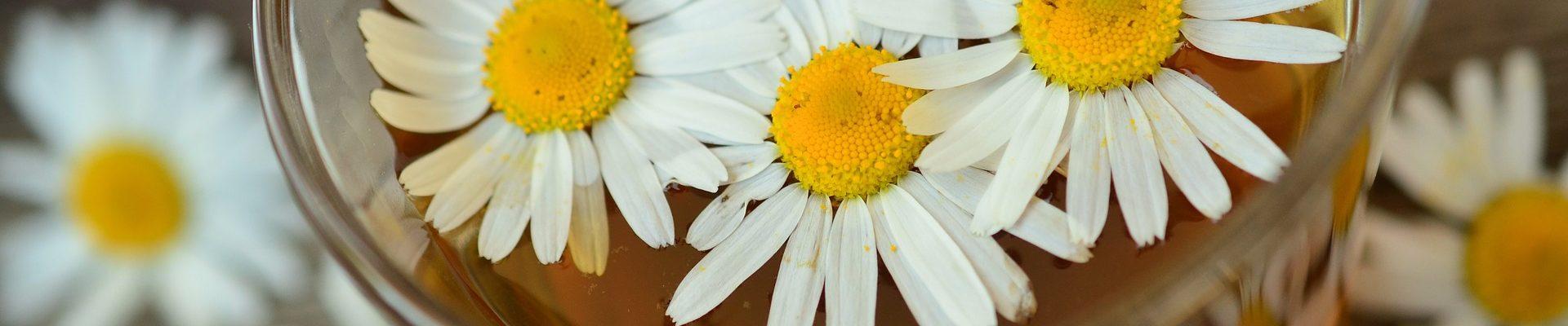カモミールの花が浮かぶ