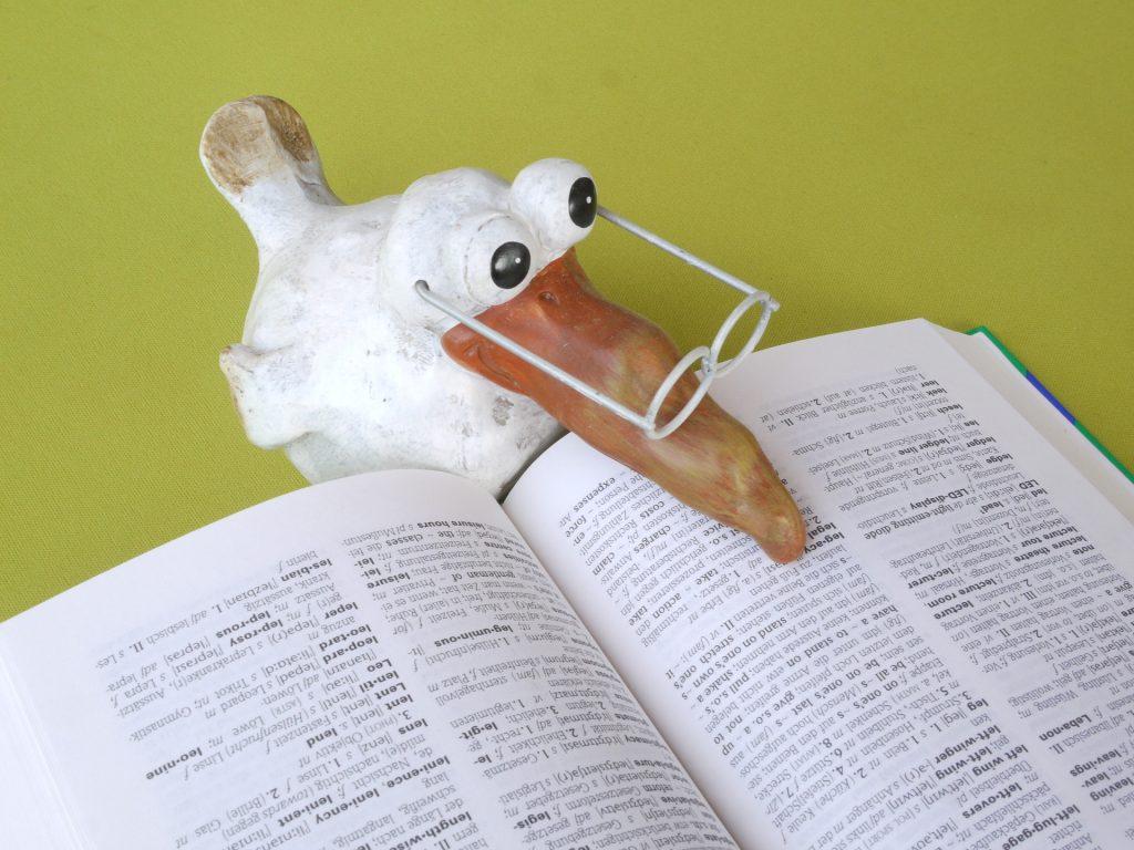 鳥の人形が辞書を読んでいる