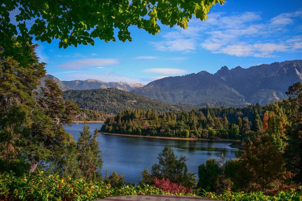 南米の緑の風景