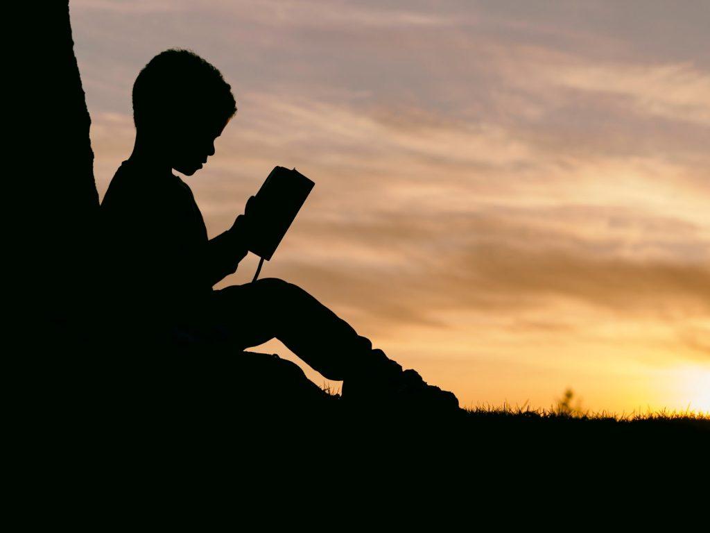 本読む少年のシルエット サンセット 草原